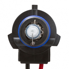 Ксеноновая лампа H10 MTF KET-01 5000K